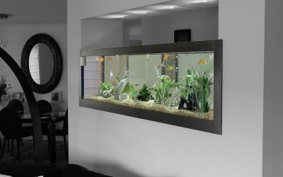 Feature Wall Tank